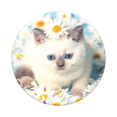 Popsockets - Poptops Swappable Device Stand And Grip Topper - Purr-fect Flower